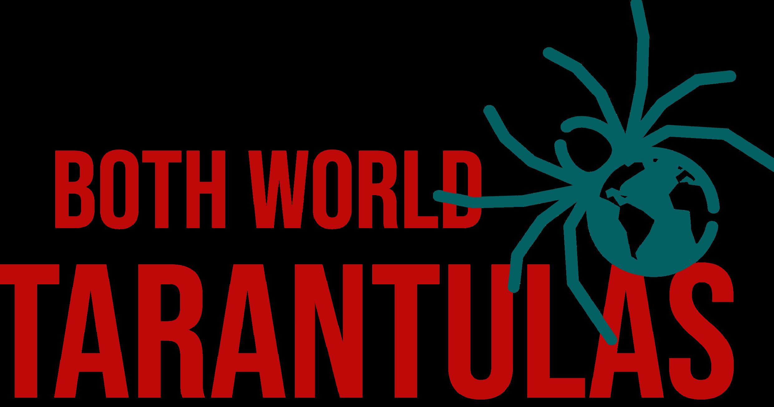 Logo for Both World Tarantulas